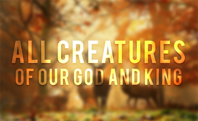 all-creatures-of-our-god-and-king
